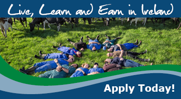 Dairy Farm Jobs in Ireland